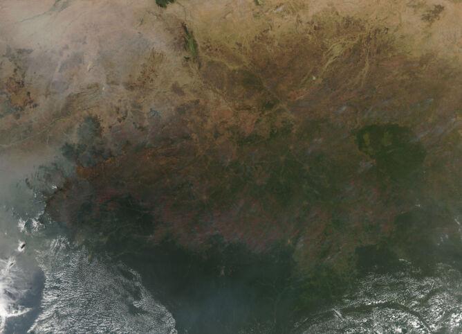 Pożary w Afryce (NASA)