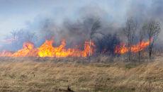 Wypalanie traw kosztowało życie już 5 osób. Staje się coraz bardziej niebezpieczne
