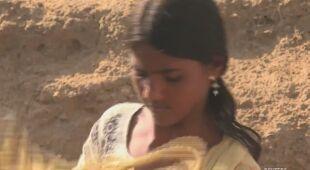 Indie zmagają się z suszą